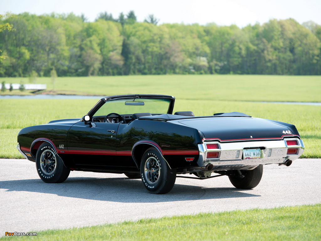 Oldsmobile 442 W-30 Convertible (4467) 1971 wallpapers (1024 x 768)