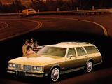 Oldsmobile Custom Cruiser 1980–81 photos