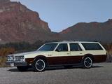 Photos of Oldsmobile Custom Cruiser (3B-Q35) 1979