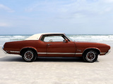 Images of Oldsmobile Cutlass Supreme SX Holiday Coupe (4257) 1971