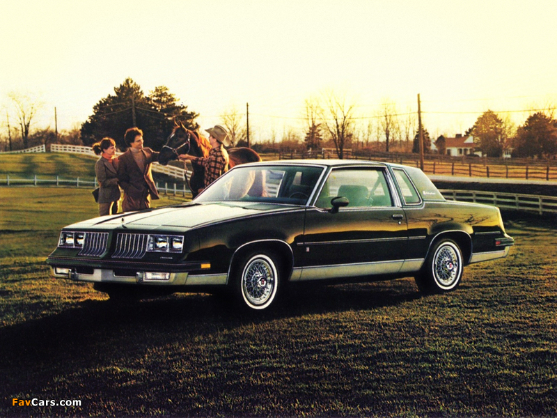 Oldsmobile Cutlass Supreme Brougham Coupe (M47) 1984 images (800 x 600)
