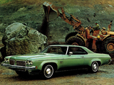 Oldsmobile Delta 88 Royale 2-door Hardtop Coupe 1973 pictures