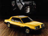 Oldsmobile Omega SX 1980–84 pictures