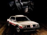 Oldsmobile Sport Omega 1981 pictures