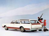 Oldsmobile Vista Cruiser Custom (3865) 1967 wallpapers