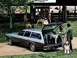 Photos of Oldsmobile Vista Cruiser 1977