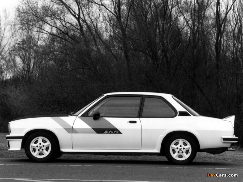 Opel Ascona 400 (B) 1979–81 pictures (800 x 600)