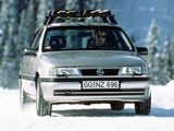 Pictures of Opel Vectra V6 (A) 1993–95