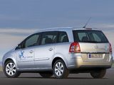 Images of Opel Zafira TNG (B) 2009