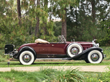 Packard Deluxe Eight Roadster (840-472) 1931 pictures