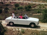 Photos of Peugeot 204 Cabriolet 1966–70