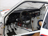Images of Peugeot 205 T16 Rally Car 1984–85