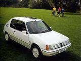 Peugeot 205 Lacoste 1984–86 images