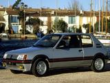 Peugeot 205 GTi 1984–94 photos
