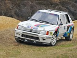 Peugeot 205 T16 Rally Car 1984–85 photos