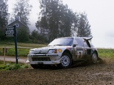 Photos of Peugeot 205 T16 Rally Car 1984–85