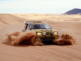 Pictures of Peugeot 205 T16 Rally Car 1984–85