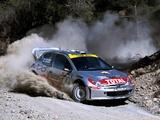 Peugeot 206 WRC 1999–2003 photos