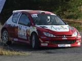Peugeot 206 Super 1600 images