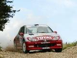 Peugeot 206 Super 1600 pictures