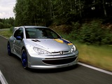 Photos of Peugeot 206 WRC Concept 1998