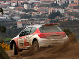 Images of Peugeot 207 S2000 2006