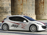 Images of Peugeot 207 RCup Concept 2006