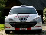 Peugeot 207 S2000 2006 photos
