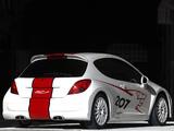 Peugeot 207 RCup Concept 2006 pictures