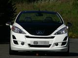 Musketier Peugeot 207 CC Engarde 2007 images