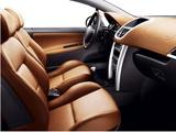 Peugeot 207 CC 2007–09 pictures