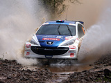 Photos of Peugeot 207 S2000 2006