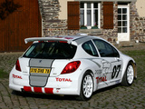 Pictures of Peugeot 207 S2000 2006