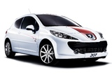 Pictures of Peugeot 207 Le Mans Series 2008