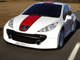 Peugeot 207 RCup Concept 2006 wallpapers
