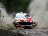 Peugeot 207 S2000 2006 wallpapers