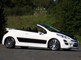 Musketier Peugeot 207 CC Engarde 2007 wallpapers