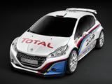 Images of Peugeot 208 Type R5 2013