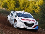 Peugeot 208 Type R5 2013 pictures
