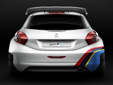 Pictures of Peugeot 208 Type R5 2013
