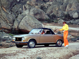 Peugeot 304 Cabriolet 1970–76 images
