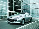 Images of Peugeot 307 Sedan CN-spec 2007