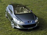Photos of Peugeot 407 Elixir Concept 2003