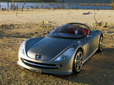 Images of Peugeot 607 Feline Concept 2000