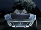 Photos of Peugeot Flux Concept 2007