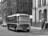 Pictures of Plaxton Bedford SB13 Embassy III (C37F) 1964–