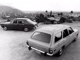 Plymouth Cricket Sedan & Wagon 1973 photos