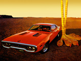 Plymouth Road Runner 383 (RM23) 1971 pictures