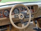 Images of Pontiac Firebird Formula 1976