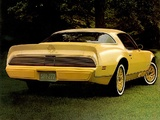 Images of Pontiac Firebird Esprit Yellowbird 1980